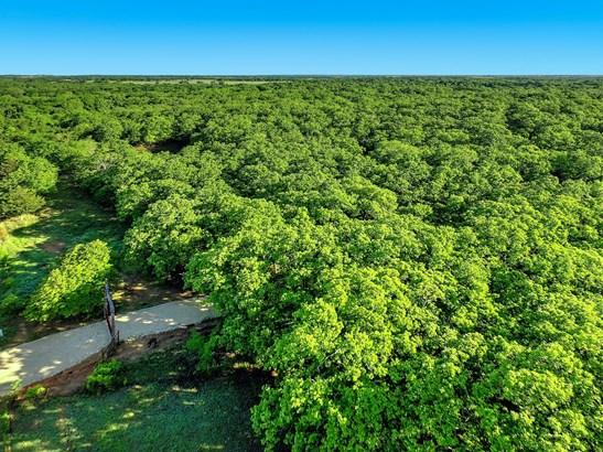 38+ Ac Grayson Survey Road, Whitesboro, TX - USA (photo 2)