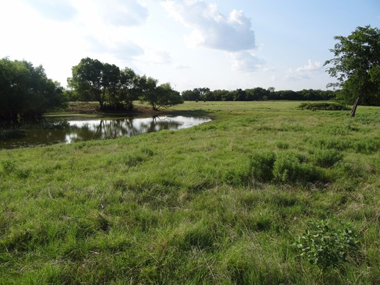 41 Ac West Line Road, Whitesboro, TX - USA (photo 3)