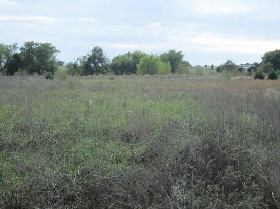 11 Ac Williams Road, Gordonville, TX - USA (photo 2)