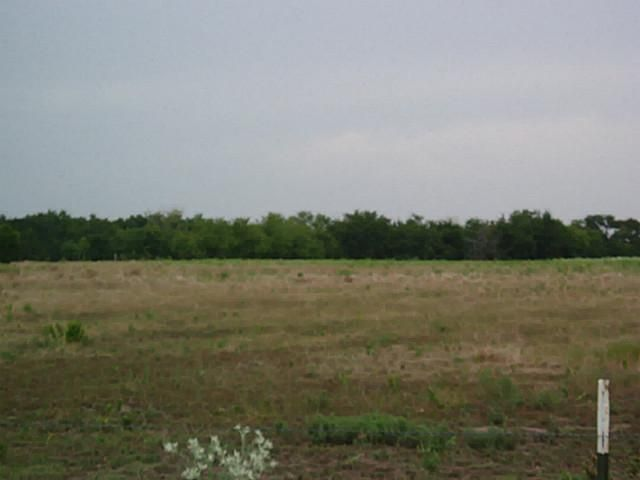 14+ac Frankwood Road, Sherman, TX - USA (photo 4)