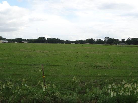 19 Ac Old Sherman Road, Whitesboro, TX - USA (photo 4)