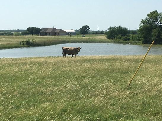 23931 Hwy 56, Whitesboro, TX - USA (photo 3)