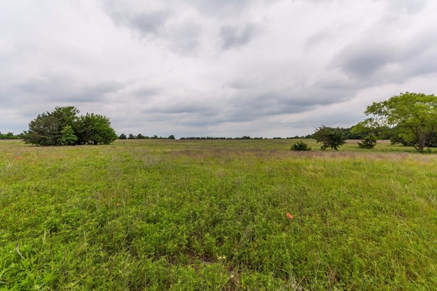 155+ac Fm 678, Whitesboro, TX - USA (photo 3)