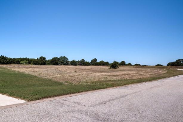 7608 Prestwick Court, Cleburne, TX - USA (photo 5)