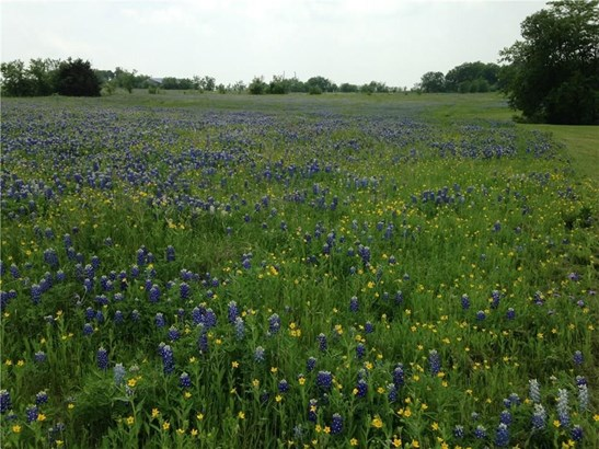 0000 Alsdorf Road, Ennis, TX - USA (photo 4)