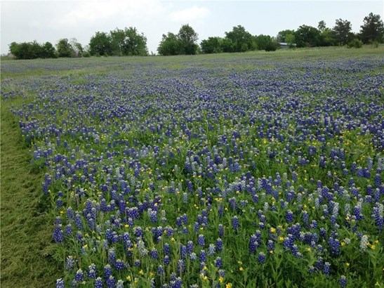 0000 Alsdorf Road, Ennis, TX - USA (photo 5)