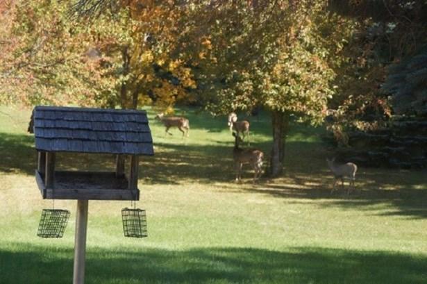 1 Story, Ranch - Neenah, WI (photo 2)