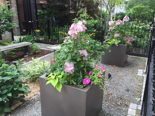 Front Garden (photo 3)