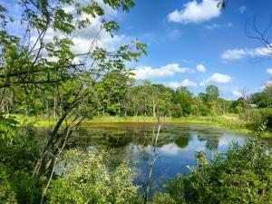 325 Duck Pond Ln Lt20, Darien, WI - USA (photo 1)