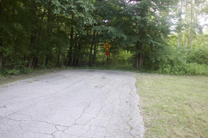 Maple Street, Sawyer, MI - USA (photo 2)
