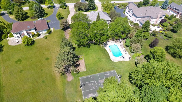 20689 N Plumwood Drive, Kildeer, IL - USA (photo 4)