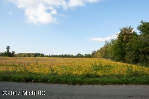Elm Valley Road, Three Oaks, MI - USA (photo 2)