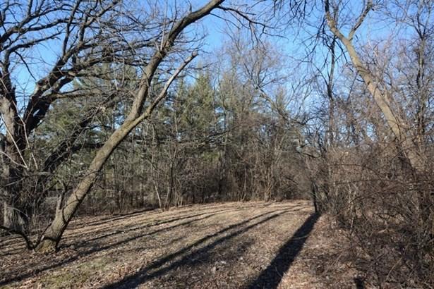 3918 Carlisle Drive, Prairie Grove, IL - USA (photo 5)