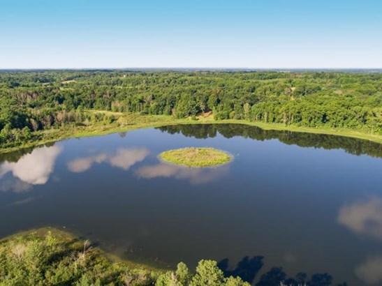14987b Boyle Lake Road, Buchanan, MI - USA (photo 2)