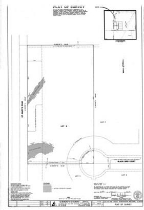 Lot 8 14960 W Black Bird Court, Mettawa, IL - USA (photo 3)