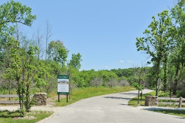 Lot 8 14960 W Black Bird Court, Mettawa, IL - USA (photo 5)
