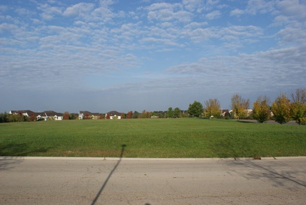 Town Center Road, Round Lake, IL - USA (photo 4)