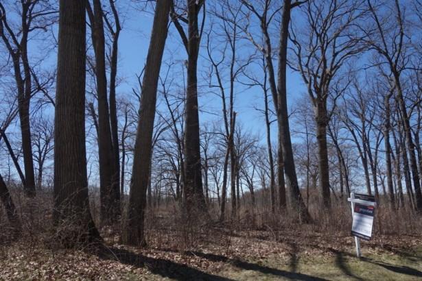 26419 N Farwell Road, Mettawa, IL - USA (photo 1)