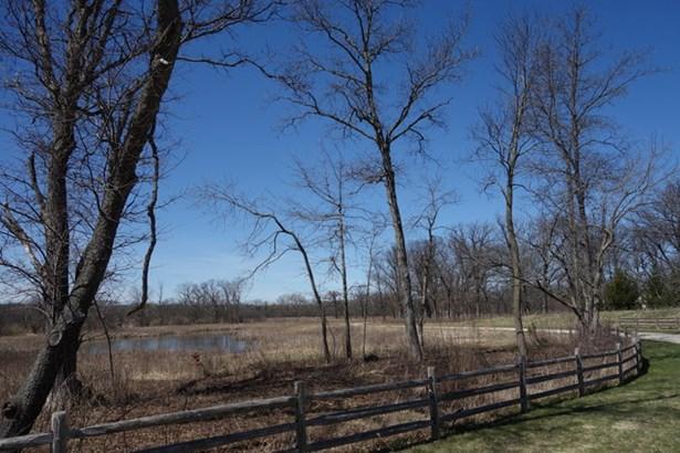 26419 N Farwell Road, Mettawa, IL - USA (photo 3)