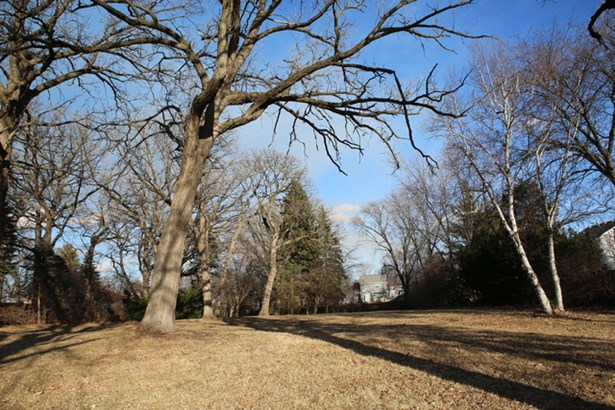 6617 Carl Court, Woodridge, IL - USA (photo 5)