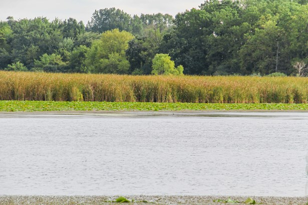 Lake View (photo 5)