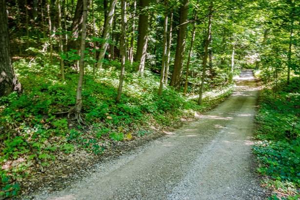 Driveway (photo 5)