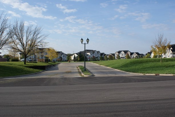 Town Center Road, Round Lake, IL - USA (photo 5)
