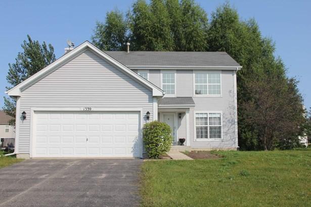 1339 S Janice Lane, Round Lake, IL - USA (photo 1)