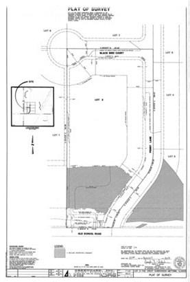 Lot 2 14915 W Black Bird Court, Mettawa, IL - USA (photo 2)