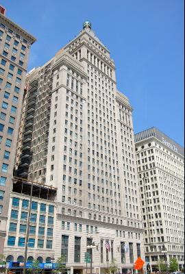 310 S Michigan Avenue 1005, Chicago, IL - USA (photo 1)