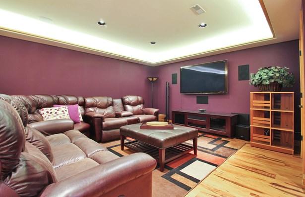 Lower Level Media Room (photo 4)