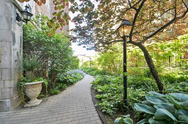 Garden (photo 3)
