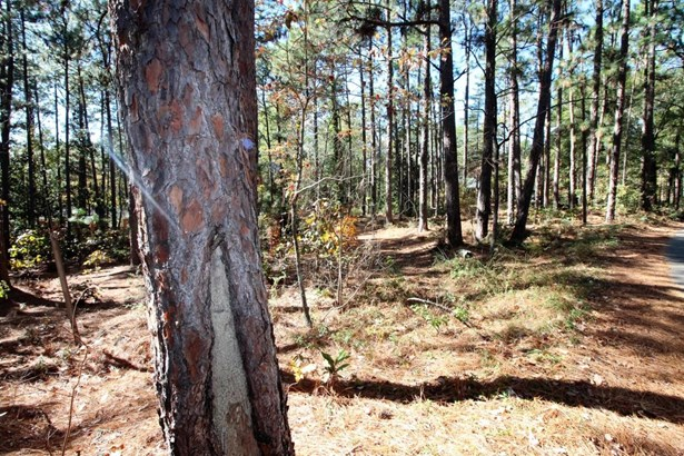 Land/Acreage - Southern Pines, NC (photo 2)
