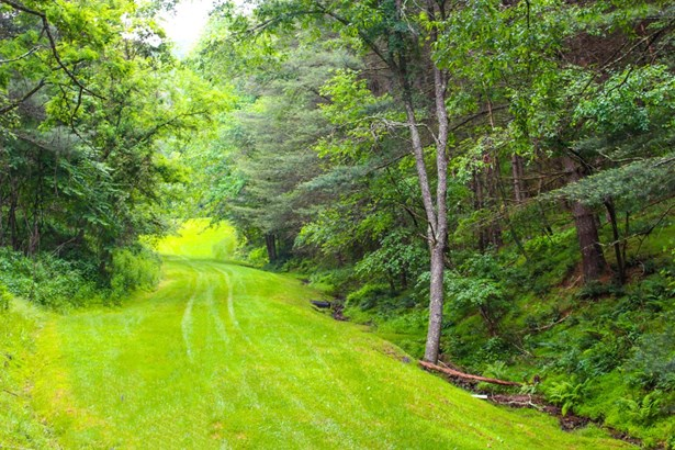 738 River Mountain Dr, Piney Creek, NC - USA (photo 5)