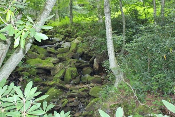 268 Creek Lane, Fleetwood, NC - USA (photo 2)