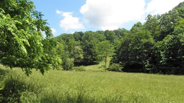 272 Mill Creek, Fleetwood, NC - USA (photo 4)