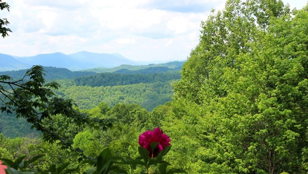 1315 Dream Mountain Road, Grassy Creek, NC - USA (photo 3)