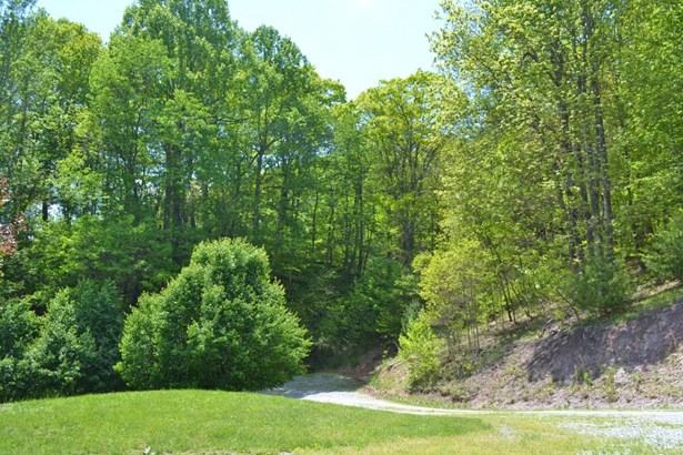 1583 Razor Ridge Rd., Troutdale, VA - USA (photo 5)