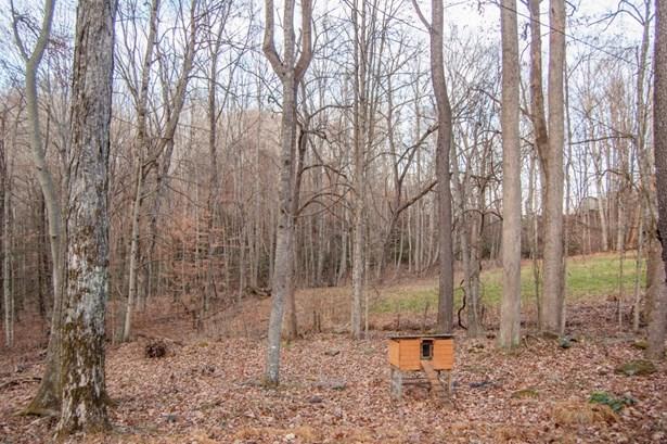 768 Carl Eastridge, Warrensville, NC - USA (photo 3)
