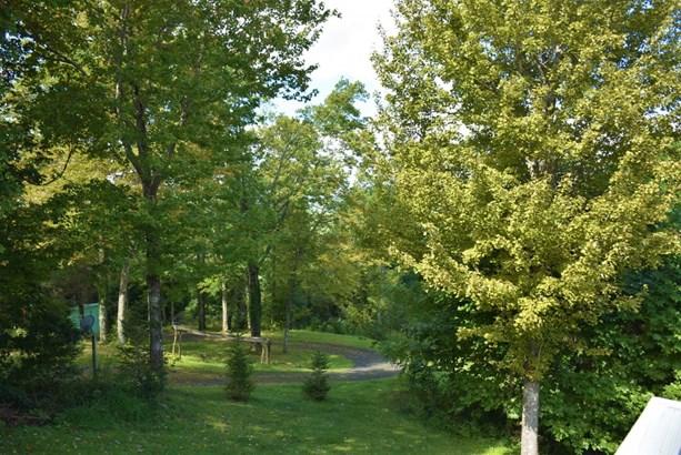 562 Nikanor, West Jefferson, NC - USA (photo 2)