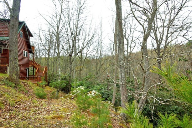 90 Tranquility, Piney Creek, NC - USA (photo 2)