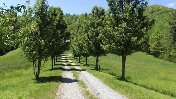 1240 Laurel Fork, Laurel Springs, NC - USA (photo 5)