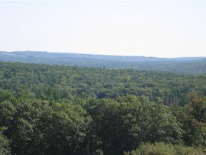 Land - Lyndeborough, NH (photo 2)