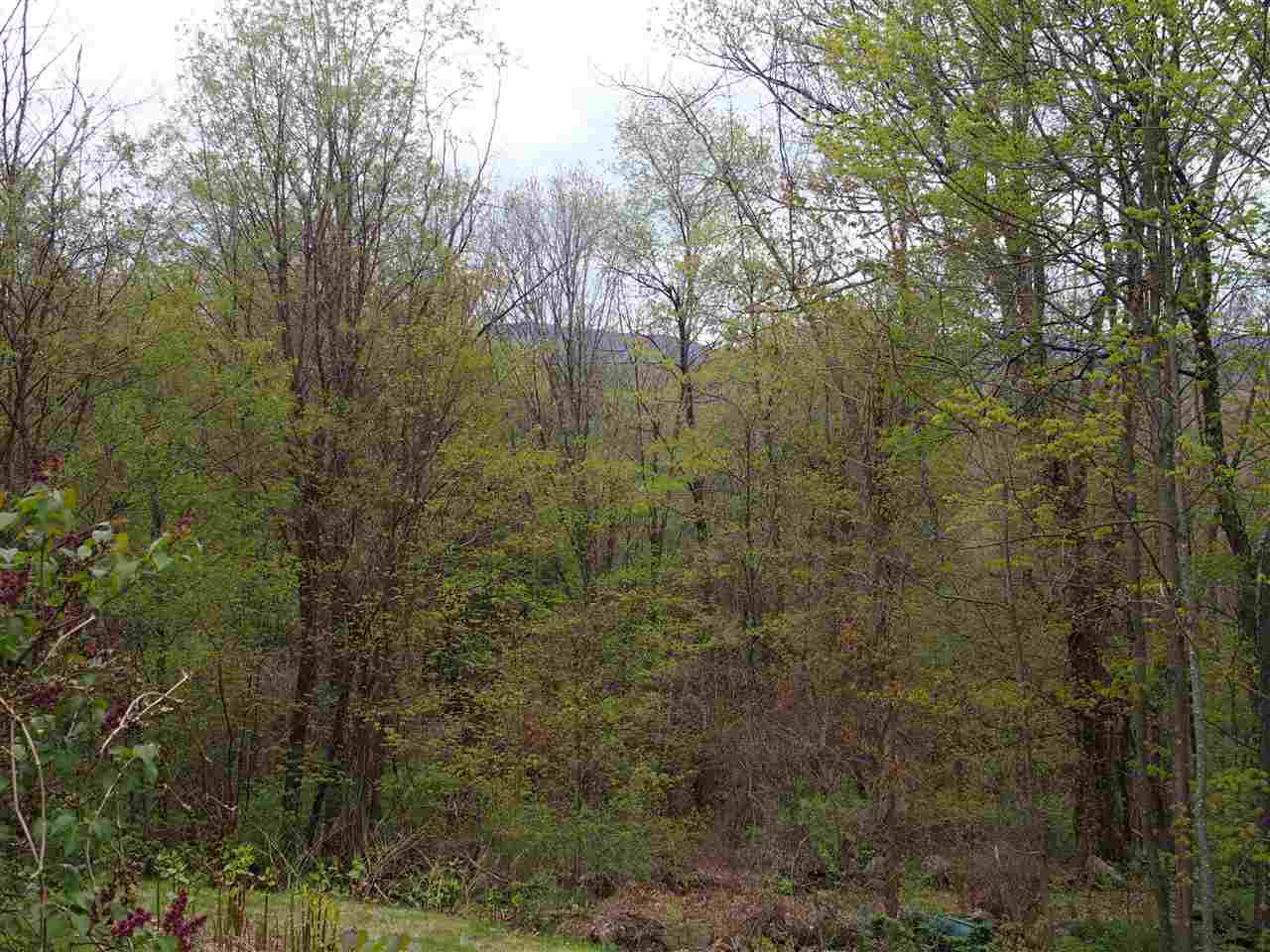 Cottage/Camp,Ranch, Single Family - Dublin, NH (photo 4)