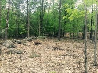 Land - Francestown, NH (photo 3)