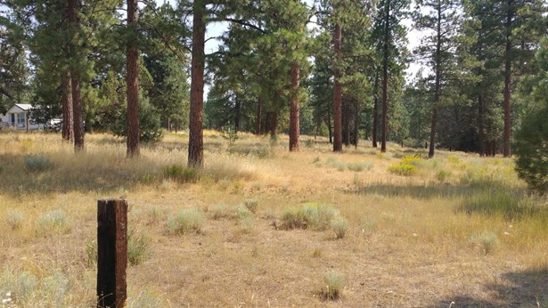 0 Witam Bluff Lot 10, Chiloquin, OR - USA (photo 2)