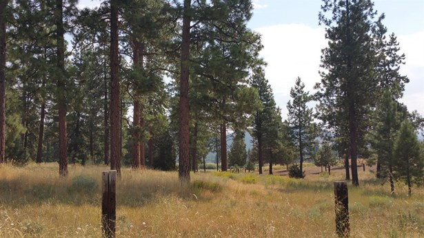 0 Witam Bluff Lot 10, Chiloquin, OR - USA (photo 3)