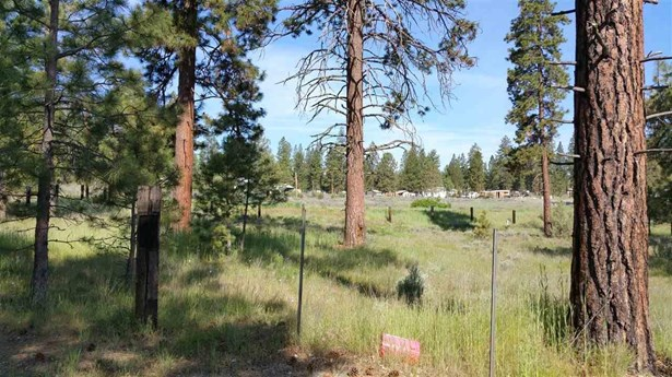 0 Witam Bluff Lot 10, Chiloquin, OR - USA (photo 4)
