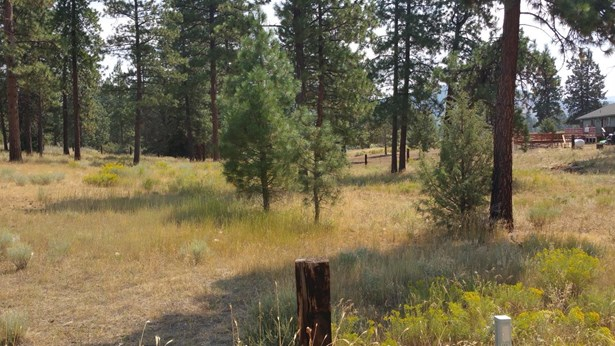 0 Witam Bluff Lot 10, Chiloquin, OR - USA (photo 5)