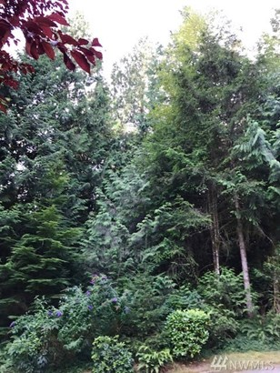 0 Wiley Lane, Olalla, WA - USA (photo 2)